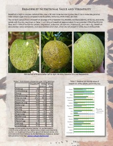 Breadfruit-Nutrition-Fact-Sheet_Page_1