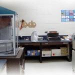 Histology Image