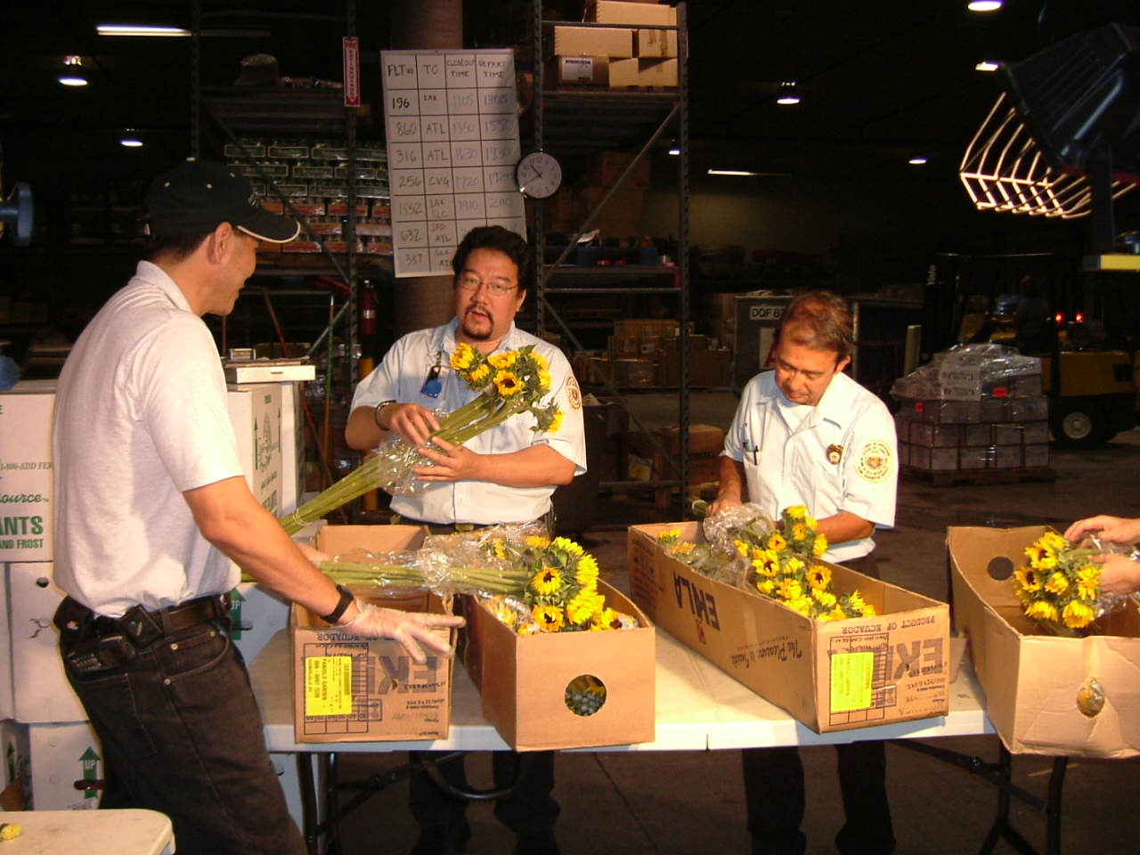 inspecting imported cut flowers.