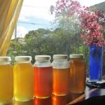 image of jars of honey