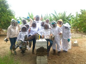 image of beekeepers outside