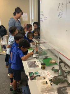 Plant Quarantine Education Specialist Kent Dumlao took the show on the road to Kamehameha School's Kapalama Campus where he spoke to 75 sixth graders on February 20th, 2019.