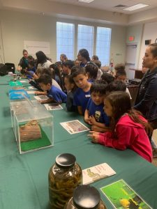 2nd grader students from Palisades Elementary School visited the Plant Quarantine Office near Sand Island on March 7, 2019 pic 2