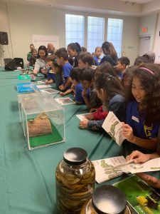 2nd grader students from Palisades Elementary School visited the Plant Quarantine Office near Sand Island on March 7, 2019 pic 4