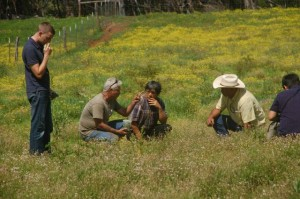 Maui Ranchers assist