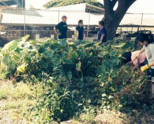 Farm2School2-loired