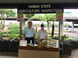 Last year's inspection station at Hilo International Airport