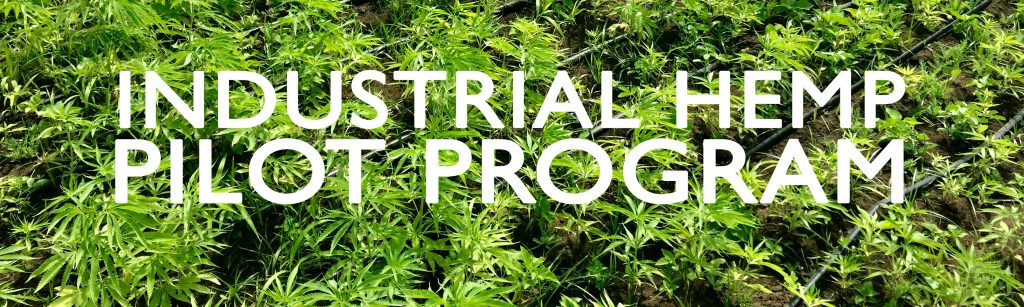 "Picture of Hemp fields with text ""Industrial Hemp Pilot Program"""