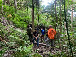 Crew surveying area of coqui infestation